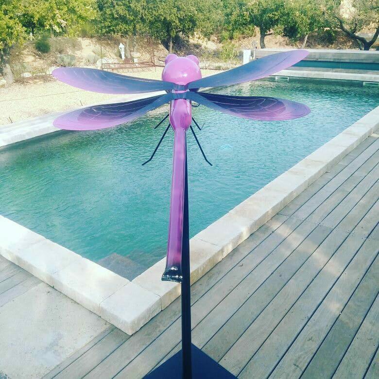 Libellule Couleur Violette